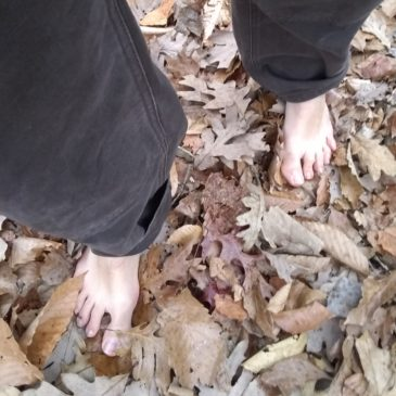 Earthing: Could Literally Reconnecting to Gaia Help Heal Us?