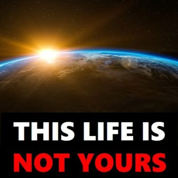 This Life Is Not Yours