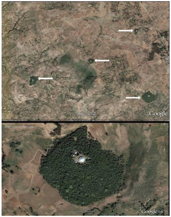 "Google Earth image of several church forests and below, the church site of Debresena (which is in the bottom right corner of the top photo). From, ""A Preliminary Assessment of Ethiopian Sacred Grove Status at the Landscape and Ecosystem Scales,"" in Diversity, 2013."